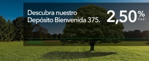 bienvenida 375